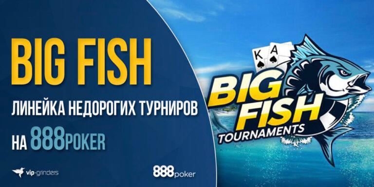 888big fish news banner
